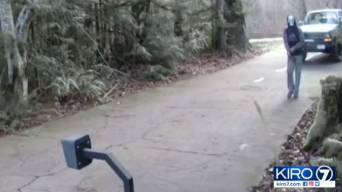 Man in skull mask appears in driveway, cuts feed to woman's home security camera