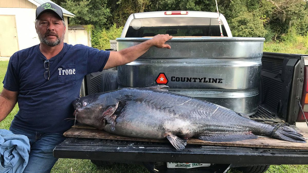 WHOA: Fisherman reels in 110-pound blue catfish to set new state record in Georgia
