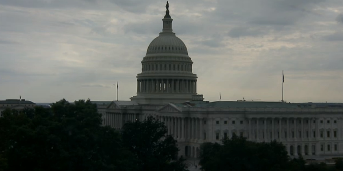 No headway in Congress for Democratic call for action on guns