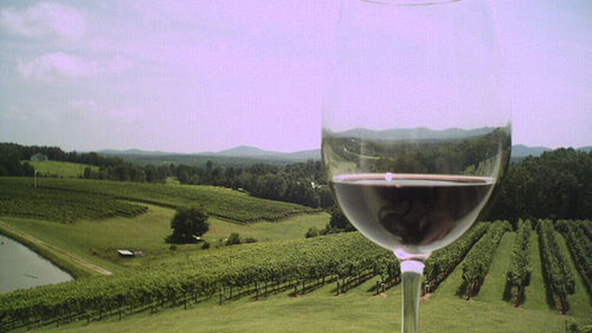 A historical first for heart of Georgia wine country