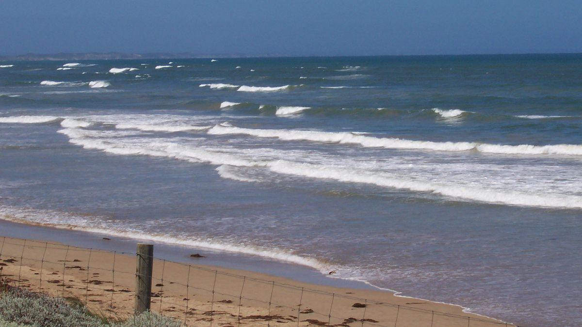 Body washes ashore on South Carolina beach