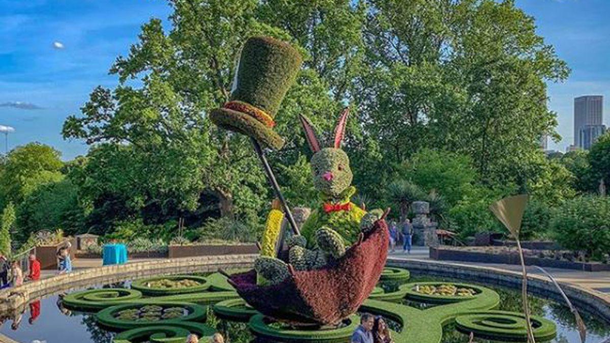 Alice S Wonderland Returns To Atlanta Botanical Garden