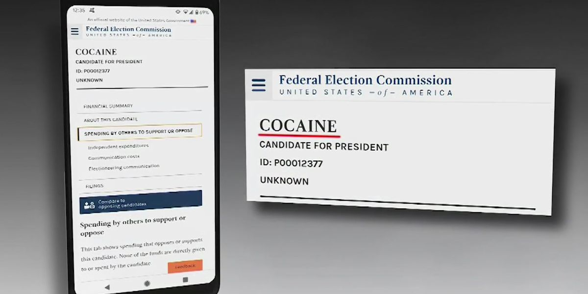 Cocaine or Chocolate Pancakes for President? FEC filings show list of odd candidates