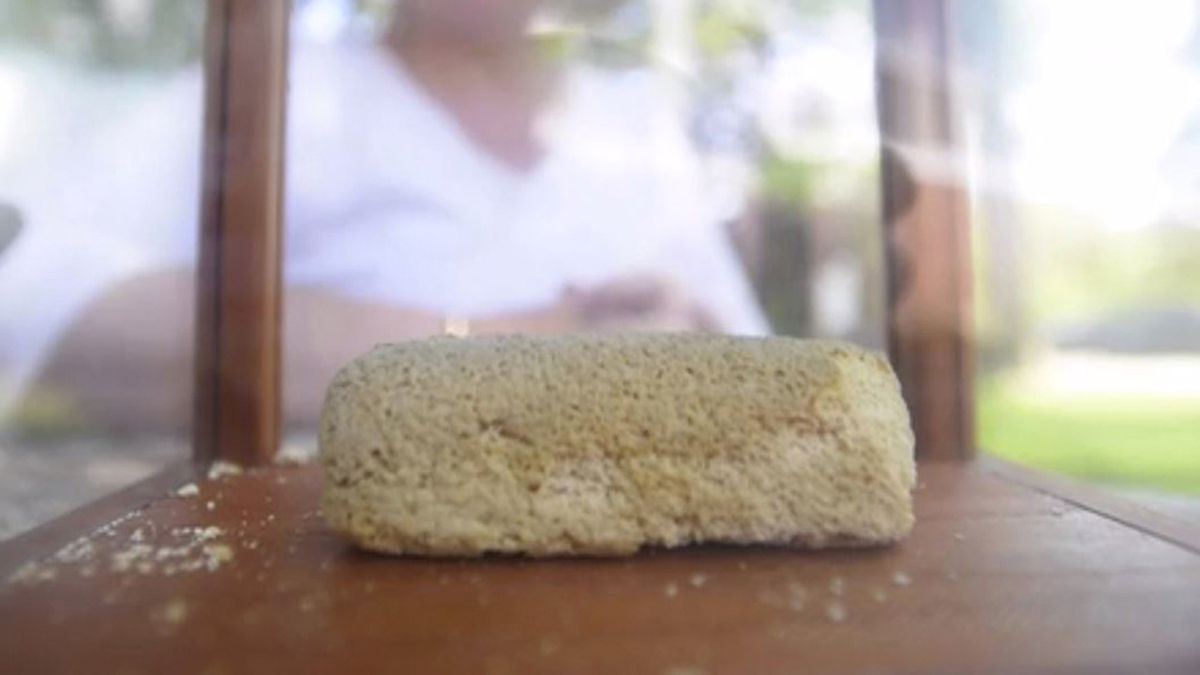 40-year-old Twinkie remains intact