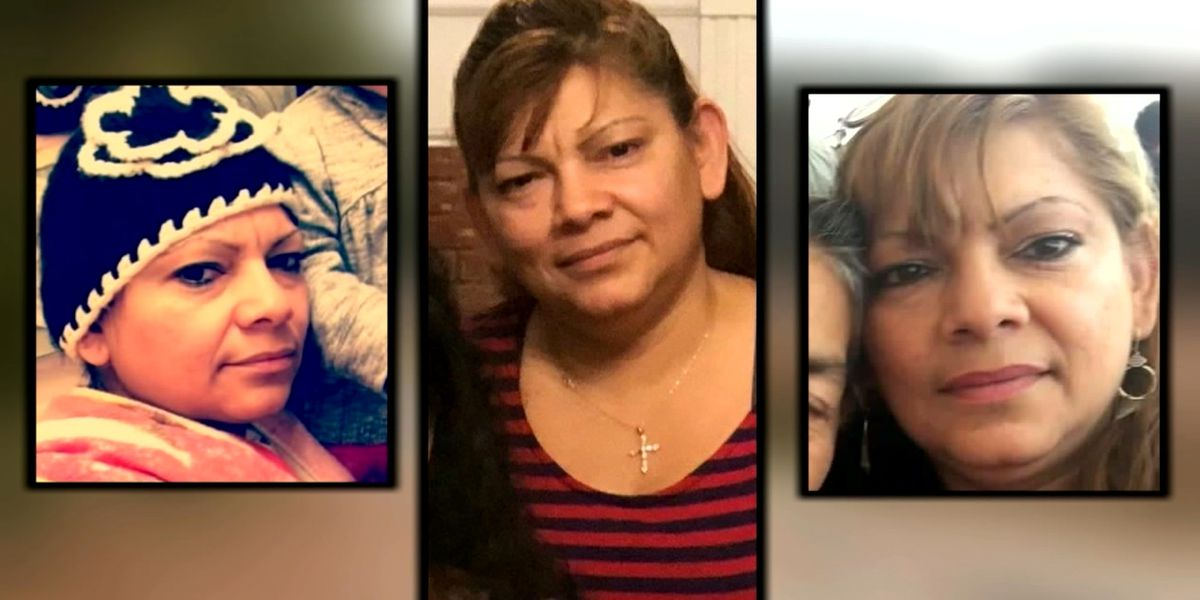 Woman dies after being attacked by 3 dogs; owners facing charges