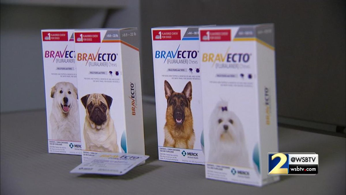 Feds want new warnings on popular flea medication after Channel 2 investigation